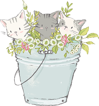 Kittens in a bucket by Lisa Glanz