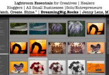 "Lightroom Essentials for Creatives | Healers Bloggers | All Small Businesses |Solo/Entrepreneurs ""Watch. Create. Shine."" 