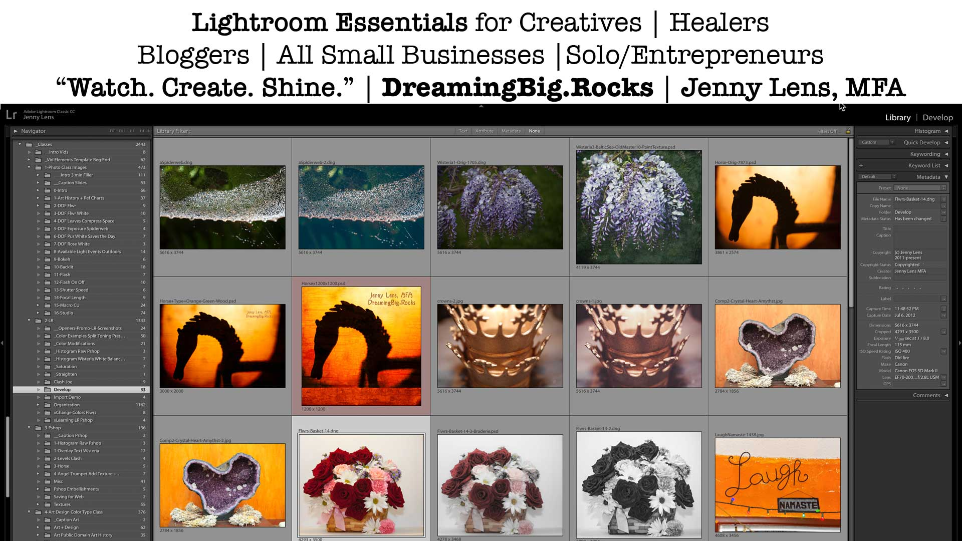 Lightroom Catalogs